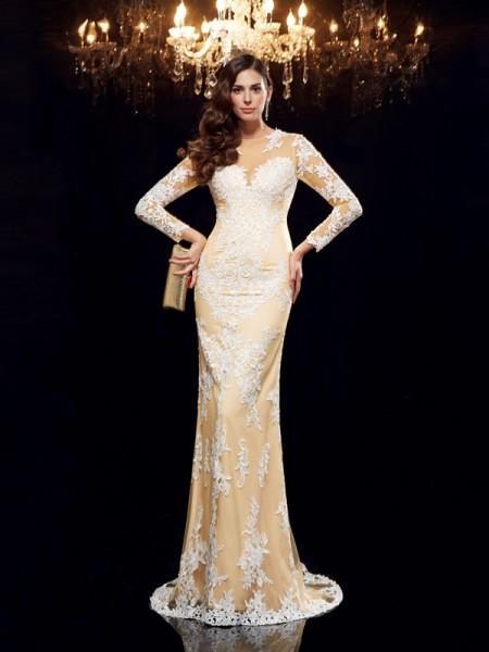 Sheath/Column Sheer Neck Applique 3/4 Sleeves Long Net Dresses